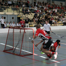 Floorball doelnetten